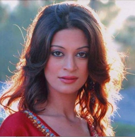 Model Candy Brar, the new Inmate of Bigg Boss 7