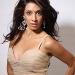 British beauty Queen Preeti Desai stars in Movie One by Two