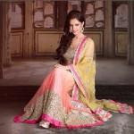 Koyal Rana Photoshoot in National Costume