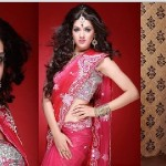 Sakshi Choudhary to be lead actress in the movie Julie 2