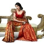Iris Maity poses for pic in Saree