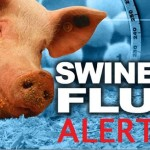 Danger Alert: Over 100 Swine Flu Deaths across Country in 2015